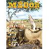 medor8.jpg - image/jpeg